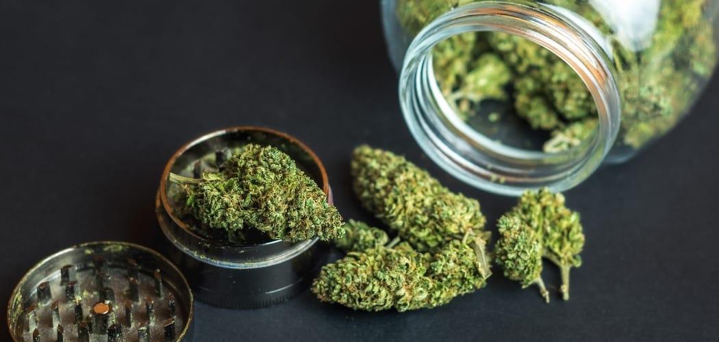 différence entre marijuana et CBD