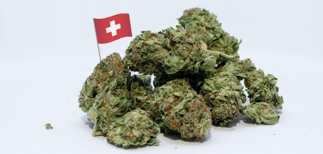la Suisse et le cannabis thérapeutique