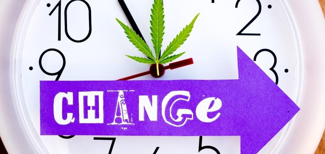 Temps d'élimination du THC