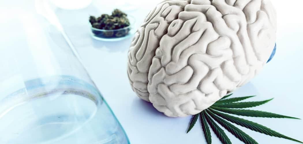 traiter troubles neurologiques